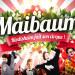Maïbaum Riedisheim 2019